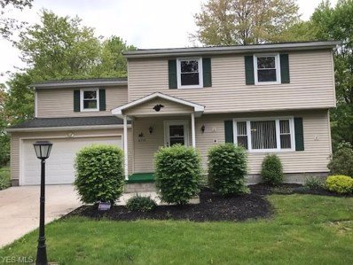 4354 Timberbrook Drive, Canfield, OH 44406 - #: 4096140