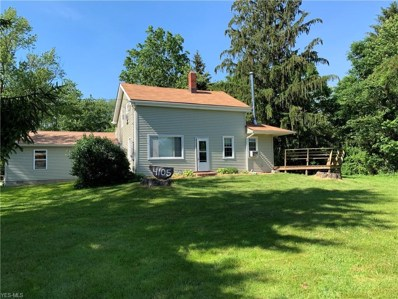 4105 Paradise Road, Seville, OH 44273 - #: 4096227