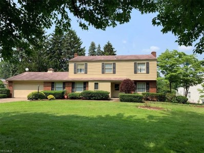 2801 Reeves, Howland, OH 44483 - #: 4096986