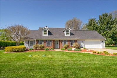 3205 Narrows Road, Perry, OH 44081 - #: 4096997