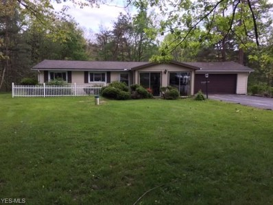 8721 N Spring Valley Park Drive, Chagrin Falls, OH 44023 - MLS#: 4097003