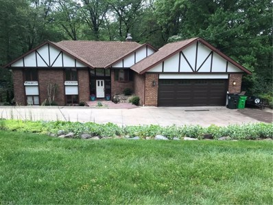 4456 Provens Drive, Akron, OH 44319 - #: 4097087