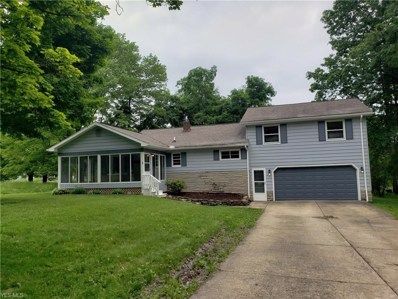4033 Pleasant Valley Lane, Canfield, OH 44406 - #: 4097143