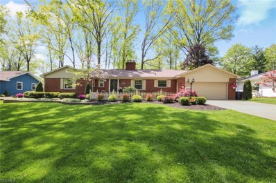 295 Sleepy Hollow Drive, Canfield, OH 44406 - #: 4097211