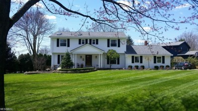 8873 Tanglewood Trail, Chagrin Falls, OH 44023 - #: 4097235