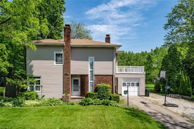 253 Vincent St, Alliance, OH 44601 - #: 4097301