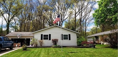 3778 Vira Road, Stow, OH 44224 - #: 4097330