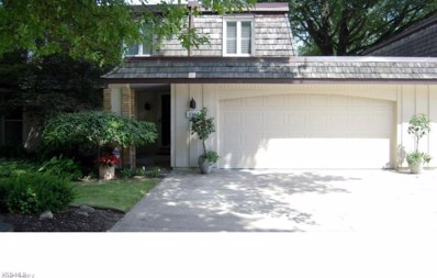8562 Tanglewood Trail, Chagrin Falls, OH 44023 - #: 4097344