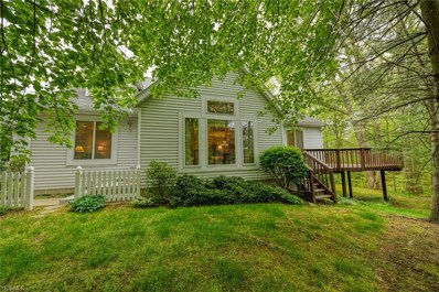 697 Shady Hollow Lane, Akron, OH 44313 - #: 4097382