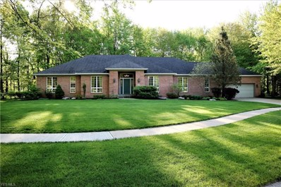 49 Mulberry Street, Oberlin, OH 44074 - #: 4097460