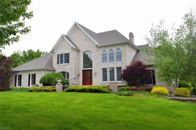 8064 Camden Way, Canfield, OH 44406 - #: 4097561