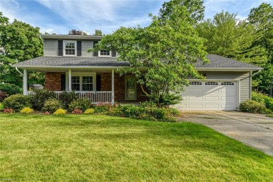 311 Dohner Drive, Wadsworth, OH 44281 - #: 4097846