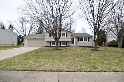 4766 Algonquin Trl, Stow, OH 44224 - #: 4097945