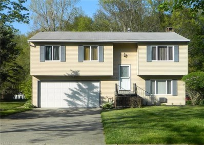 11245 Heritage Drive, Twinsburg, OH 44087 - #: 4098234