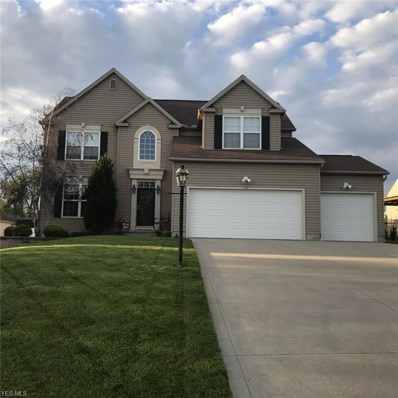 354 Bluestone Court, Wadsworth, OH 44281 - #: 4098408