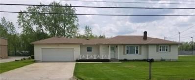 41369 Schadden Road, Elyria, OH 44035 - #: 4098503