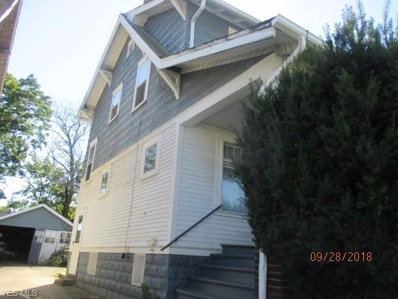 59 E Avondale Avenue, Youngstown, OH 44507 - #: 4098602