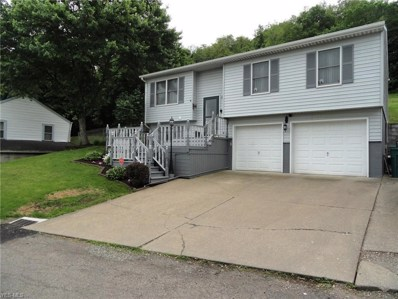 134 Indiana Avenue, Chester, WV 26034 - #: 4098604