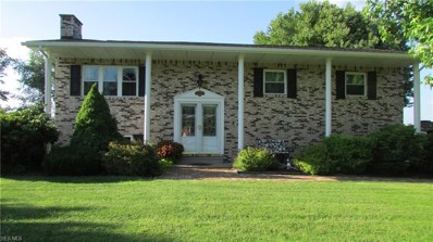 49590 E Ruby Drive, East Liverpool, OH 43920 - #: 4098629