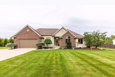 7758 Heritage Way, Amherst, OH 44001 - #: 4098870