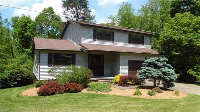 735 Timberline Drive, Vincent, OH 45784 - #: 4098893