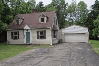 5924 Horning Road, Kent, OH 44240 - #: 4098900