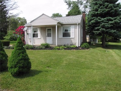 43 Goodrich Avenue, Barberton, OH 44203 - #: 4099004