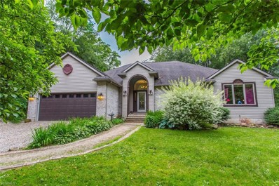 2632 Berry Road, Akron, OH 44320 - #: 4099016