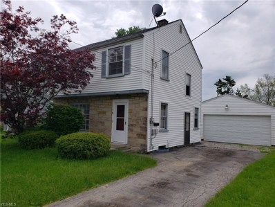 25 Melrose Avenue, Youngstown, OH 44512 - #: 4099041