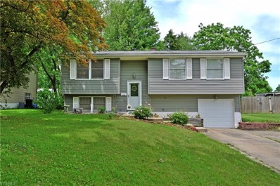 5124 Willow Crest Drive, Youngstown, OH 44515 - #: 4099276