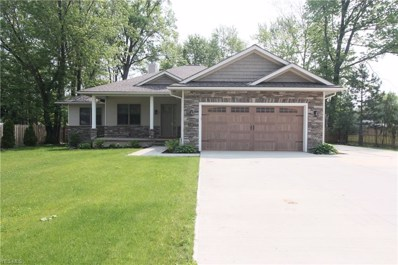 133 Avon Belden Road, Avon Lake, OH 44012 - #: 4099631