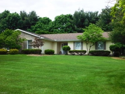 3614 Tyler Drive, Canfield, OH 44406 - #: 4099724