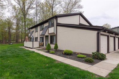 35312 S Turtle Trail UNIT A, Willoughby, OH 44094 - #: 4099901