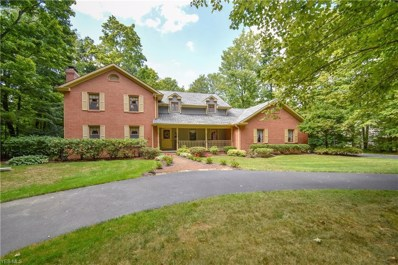 9910 Callawoods Drive, Canfield, OH 44406 - #: 4100050