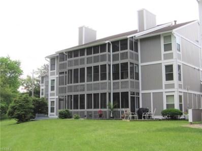 231 Portage Lakes Drive UNIT F, Akron, OH 44319 - #: 4100156