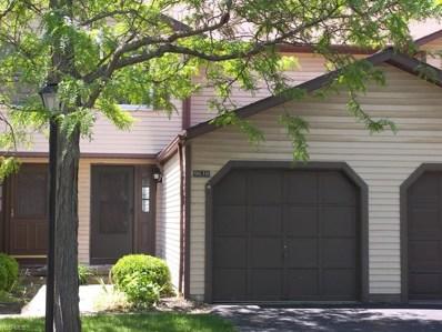 9638 E Idlewood Drive, Twinsburg, OH 44087 - #: 4100162