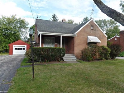 3483 Hadley Avenue, Youngstown, OH 44505 - #: 4100191