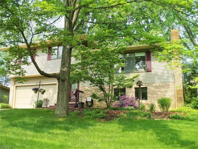 5488 Pinehill Drive, Mentor-on-the-Lake, OH 44060 - #: 4100211
