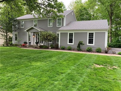 409 Millbrook Street, Canfield, OH 44406 - #: 4100381