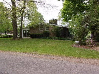 6865 North Boulevard, Andover, OH 44003 - #: 4100432