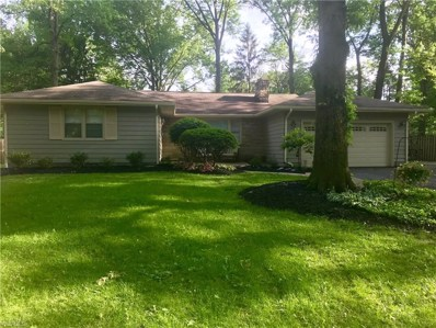 345 Deer Trail Avenue, Canfield, OH 44406 - #: 4100463