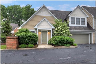 3725 Millikin Court, Cleveland Heights, OH 44118 - #: 4100519