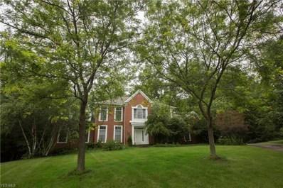 514 Meadowridge Way, Hudson, OH 44236 - #: 4100684