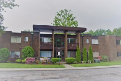 10740 Valley View Road UNIT A16, Sagamore Hills, OH 44067 - #: 4100942