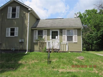 212 Duquesne Street, Columbiana, OH 44408 - #: 4100955