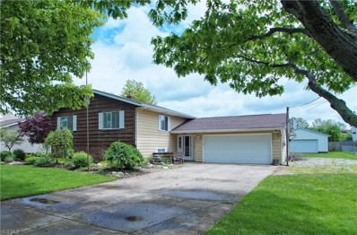 4009 Dayton Road, Madison, OH 44057 - #: 4101187