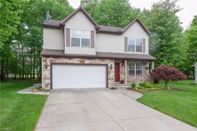 7041 Oak Tree Drive S, Lorain, OH 44053 - #: 4101510