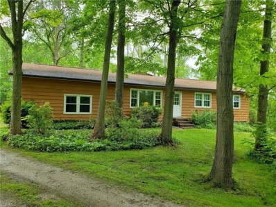 14130 Rock Creek Road, Chardon, OH 44024 - #: 4101533
