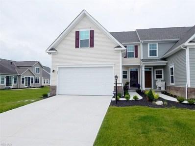 801 Robinson Drive, Lagrange, OH 44050 - #: 4101562