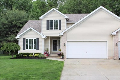 5439 Heather Hill Drive, Mentor, OH 44060 - #: 4101613